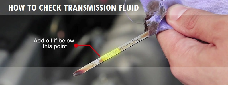 How to Check Transmission Fluid : Importance, Symptoms, How to add