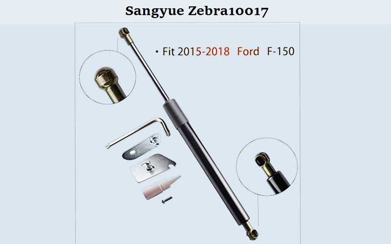 Sangyue-Zebra10017